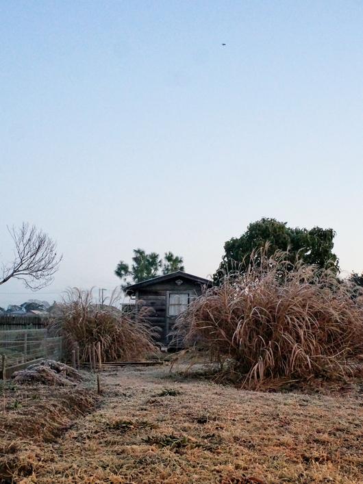 小屋とトンビと朝陽
