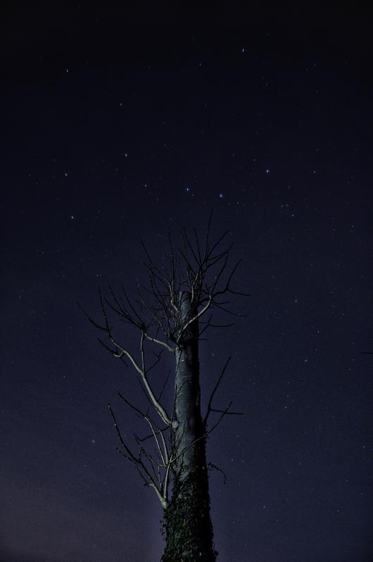 房総フィールド+北斗七星