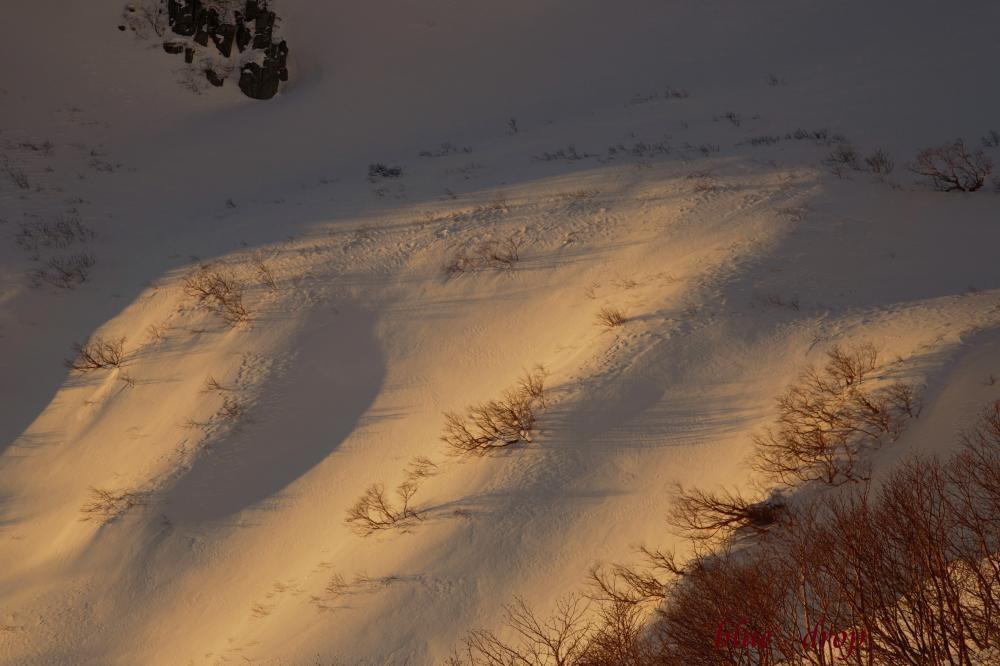 朝焼けの雪面