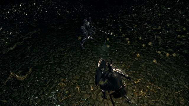 PC 版 DARK SOULS with ARTORIAS OF THE ABYSS EDITION(Prepare To Die Edition) DSfix スクリーンショット、エリア 小ロンド遺跡(New Londo Ruins) ダークレイス