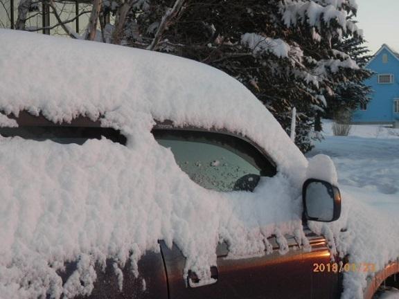 雪降りです。 1/22