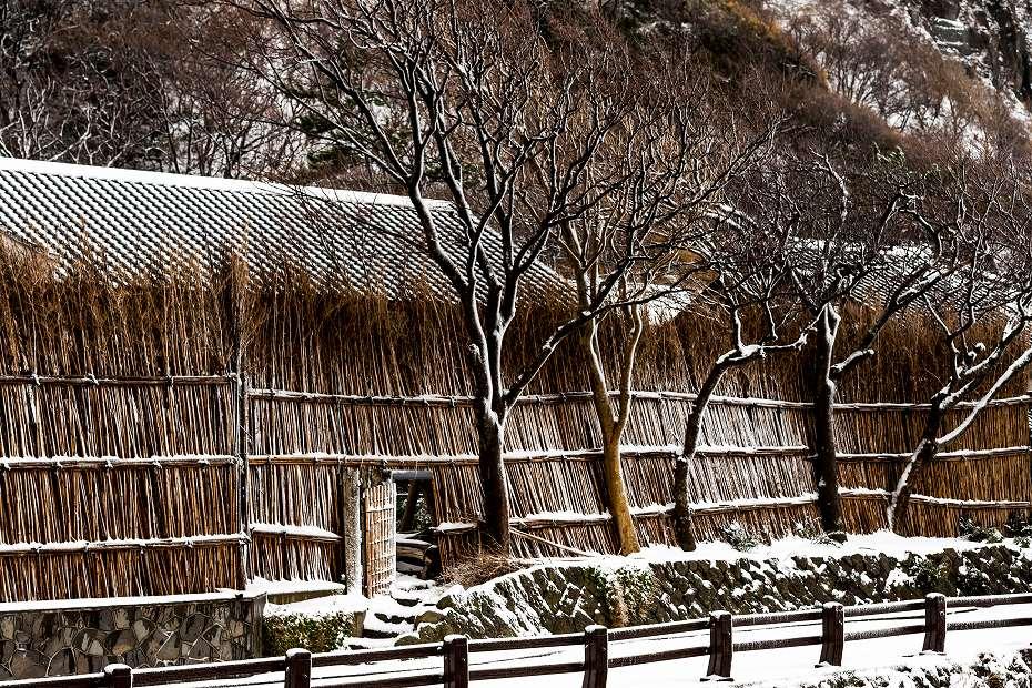 2018.01.11 雪の上大沢 1