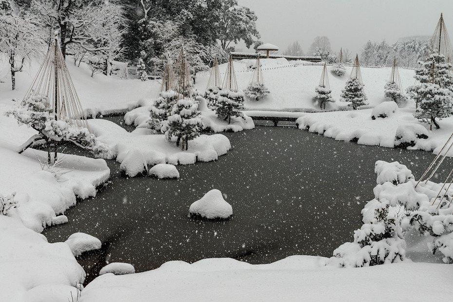 2018.02.05 玉泉院丸庭園の雪景色 1