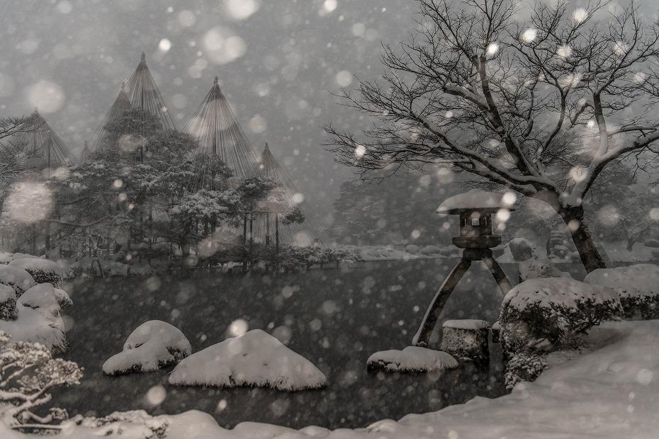 2018.02.05 雪降る兼六園 1