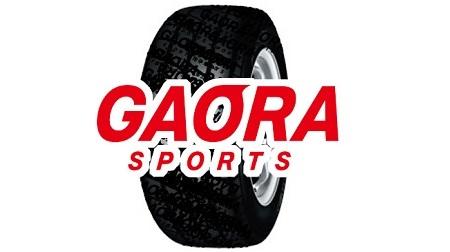 2018インディカーシリーズもGAORAで放送