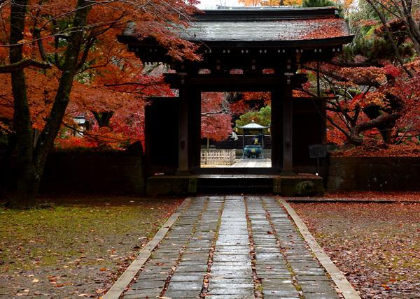 晩秋の東禅寺