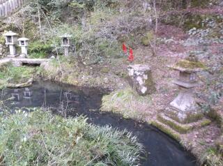 鞍馬寺放生池