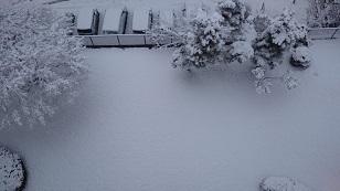 180202雪2