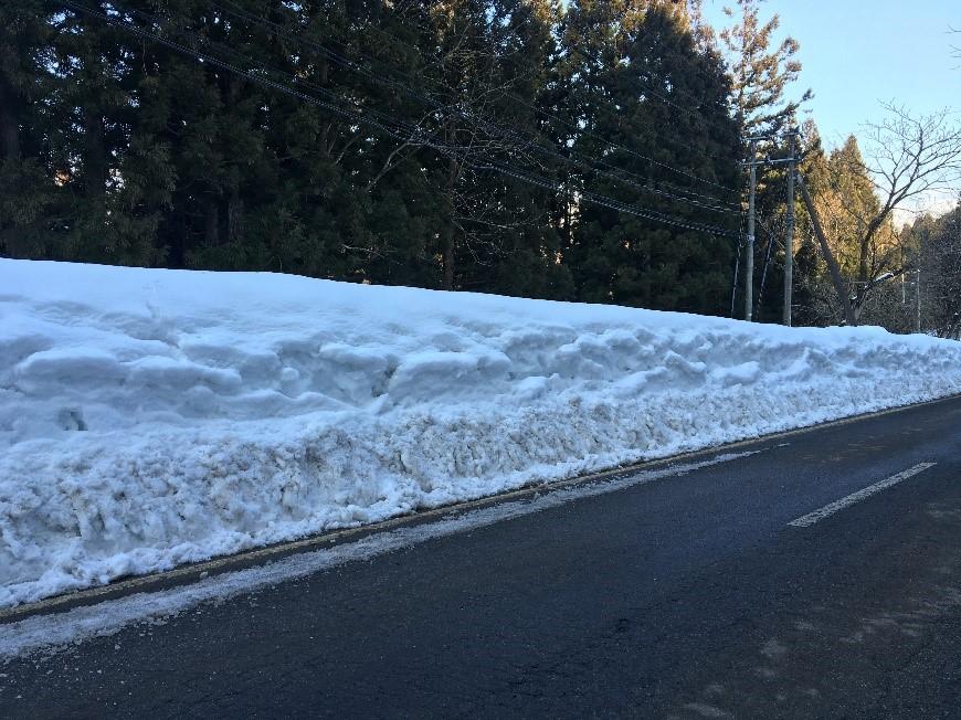 山道の雪の様子