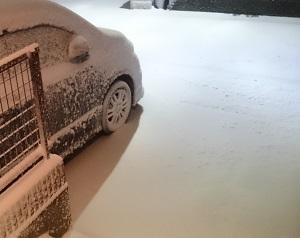 2017.1雪