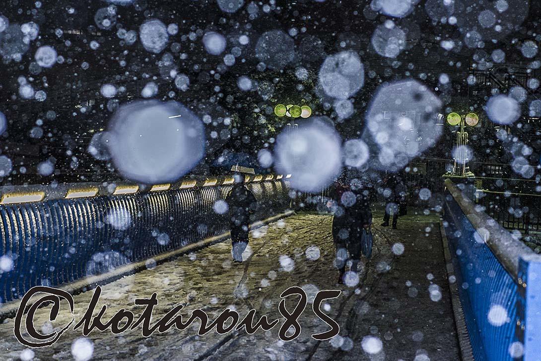 4年ぶりの大雪 20180123