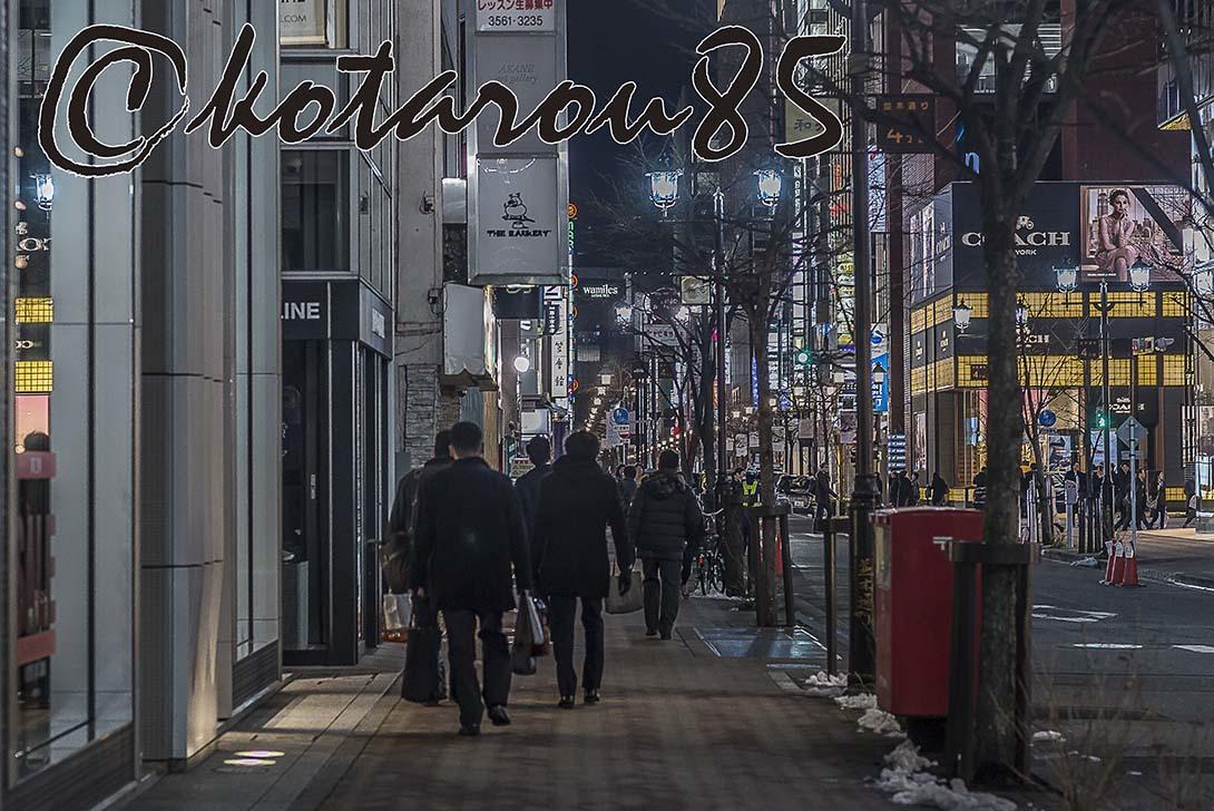 名残り雪3 20180124