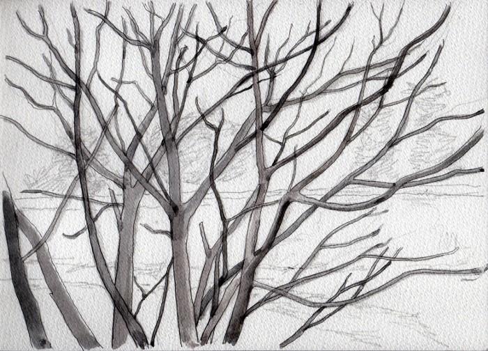 天の川早春 グリザイユ (700x504)