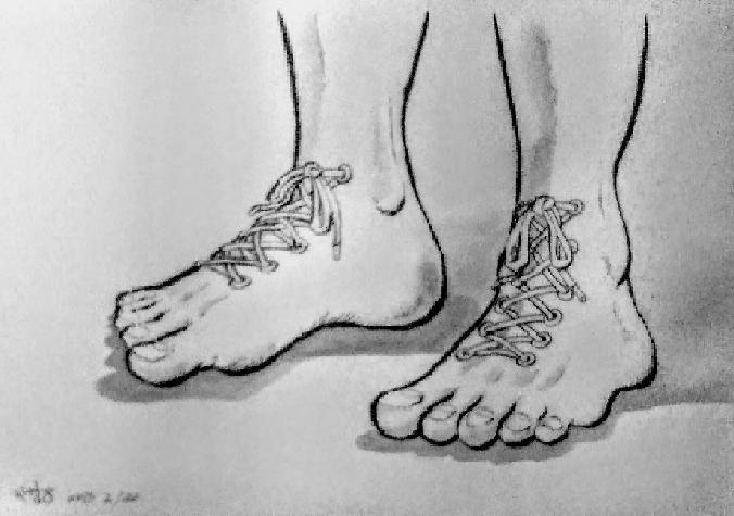 ダーウィンの足