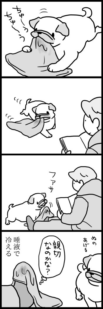 t431やさしい犬