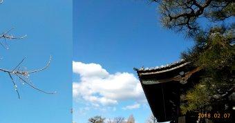 東本願寺2-7