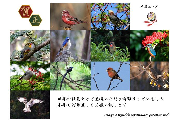 2018 Blog 新年挨拶