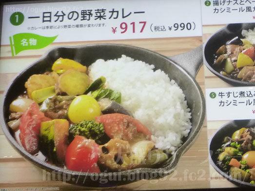 名物一日分の野菜カレー009