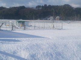 【写真】雪景色のアランフィールド