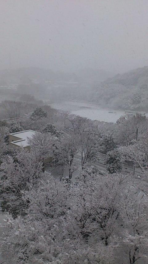 横浜 雪1