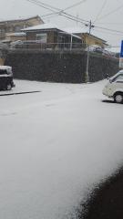 1/24雪