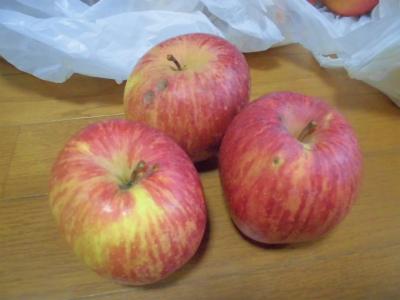 1.9リンゴ1
