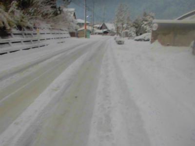 2.5雪の朝1