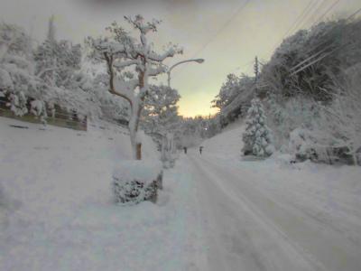 2.5雪の朝2