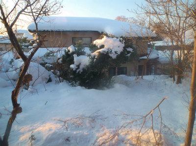 2.9庭の雪
