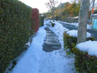 2.14雪の歩道