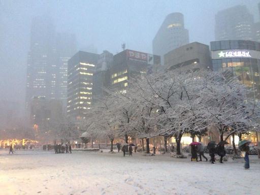 大雪警報東京