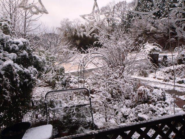 雪の朝20171209