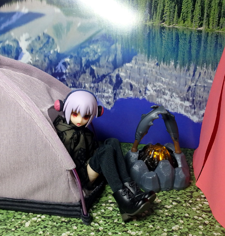 30_1_19 なんちゃってテント 1