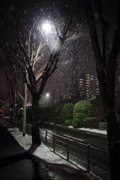 20180126雪の千里_MG_2309