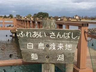 瓢湖_02