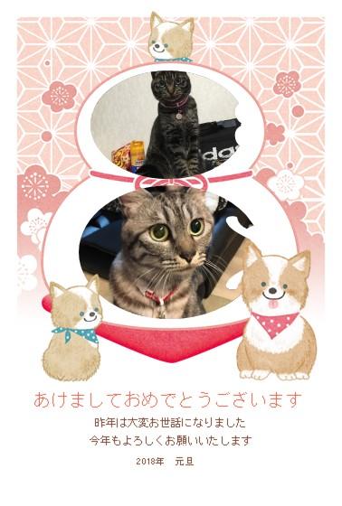 24446_nenga_kagamimochi.jpg
