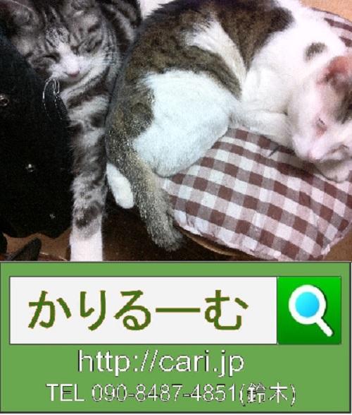 moblog_451c8dce.jpg