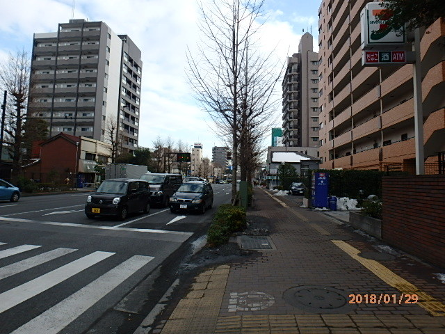 P1290381.jpg