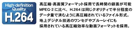 h264-g.jpg