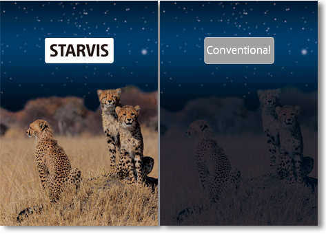img_Starvis02-sony.jpg