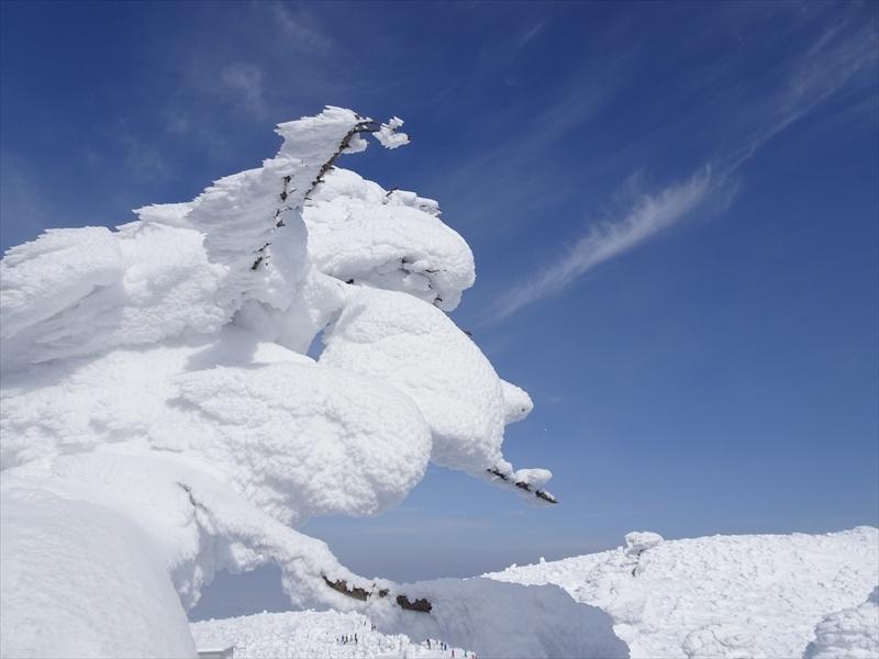 山形とラリー018