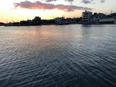 さざ波が立つ三崎港