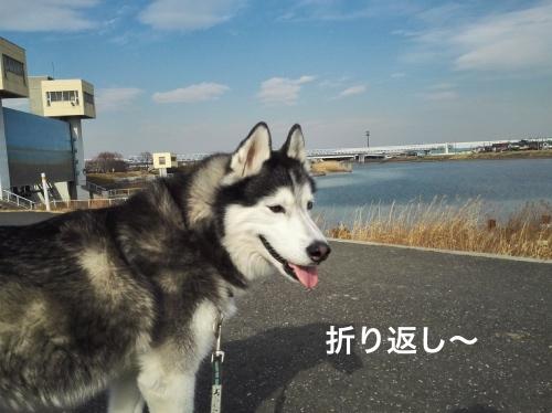 IMG_20180210_132513_Fotor.jpg