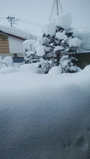 20180214雪