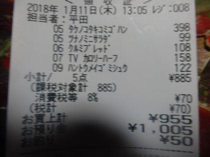 mini_DSC05000.jpg