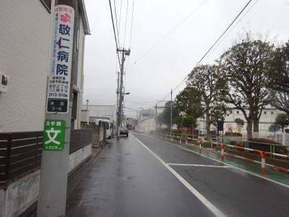 mini_DSC05800.jpg