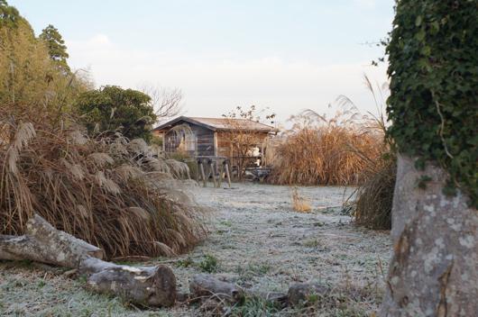 霜の降りた房総フィールドの朝