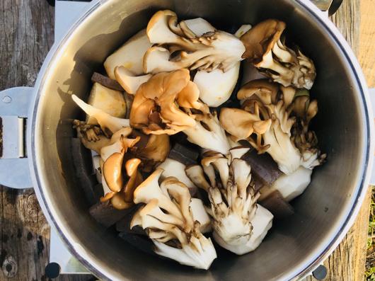 房総フィールド産 里芋の芋煮 舞茸とこんにゃく