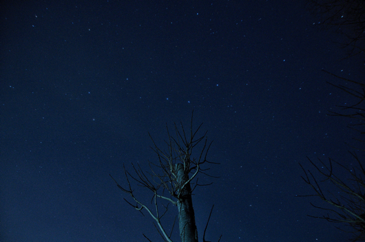 Sigma 18-250 F3.5-6.3試し撮り 房総フィールドの星空(北斗七星)