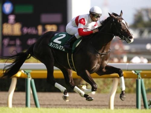 【競馬】平成最後の怪物ダノンプレミアム
